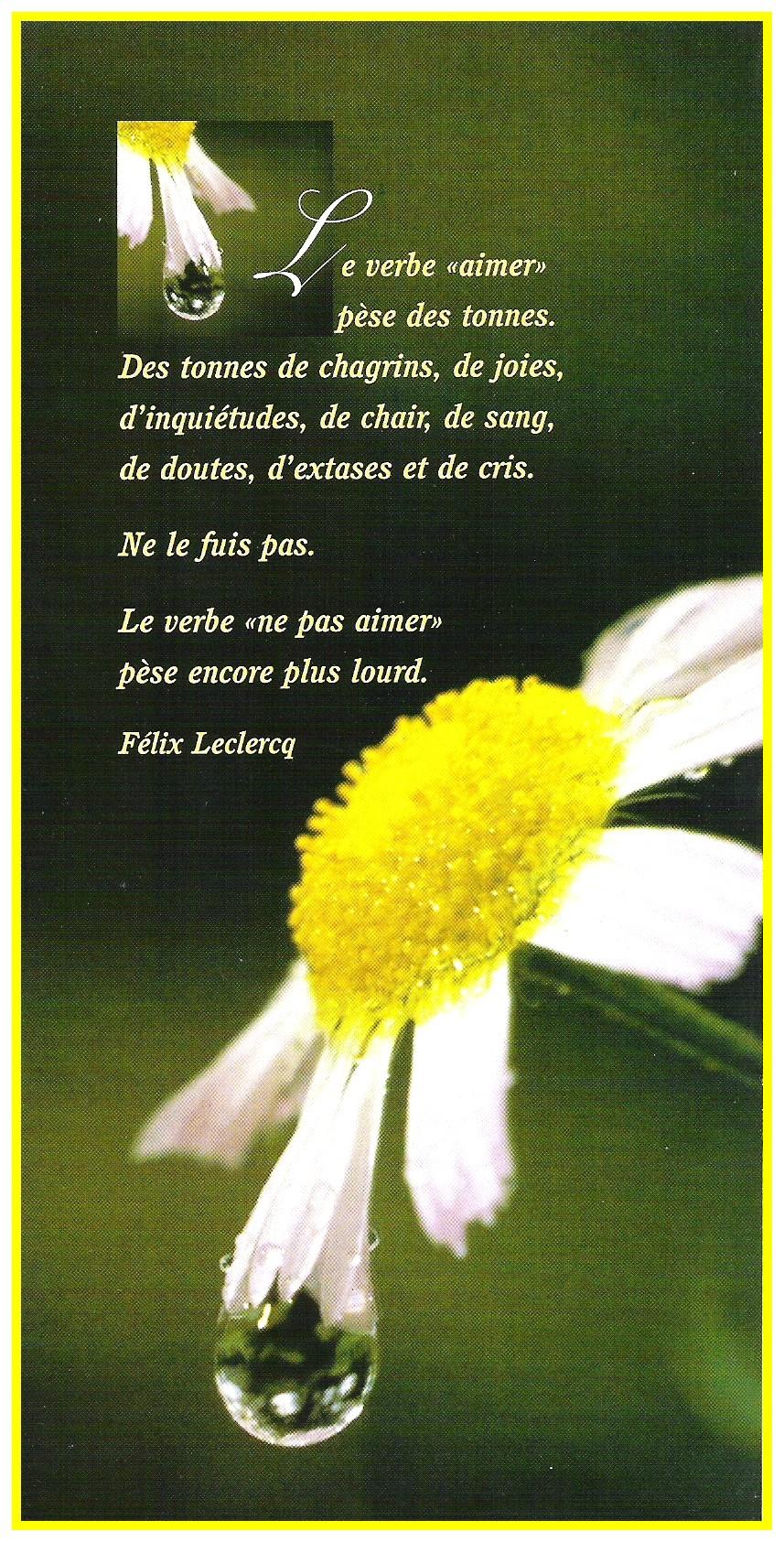 poèmes et citations d'amour! (2) Forum Dziriya.net